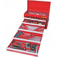 243 Pce A/F Met Tool Kit 9 Drawer